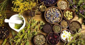 Referensi Herbal Nomor 1, Deherba.com
