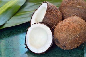 cara membuat kelapa kopyor